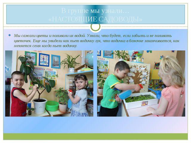 В группе мы узнали… «НАСТОЯЩИЕ САДОВОДЫ» Мы сажали цветы и поливали их водой...