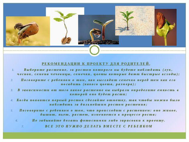 РЕКОМЕНДАЦИИ К ПРОЕКТУ ДЛЯ РОДИТЕЛЕЙ. Выберите растение, за ростом которого...