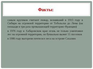 Факты: самым крупным считают пожар, возникший в 1915 году в Сибири на огромно