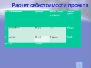 Расчет себестоимости проекта Экономический расчет №Наименование Цена руб.