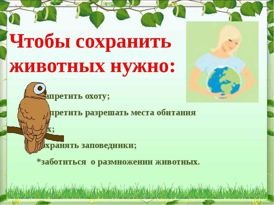 Чтобы сохранить животных нужно:  *запретить охоту; *запретить разрешать...