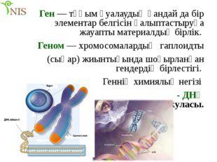 Ген — тұқым қуалаудың қандай да бір элементар белгісін қалыптастыруға жауапты