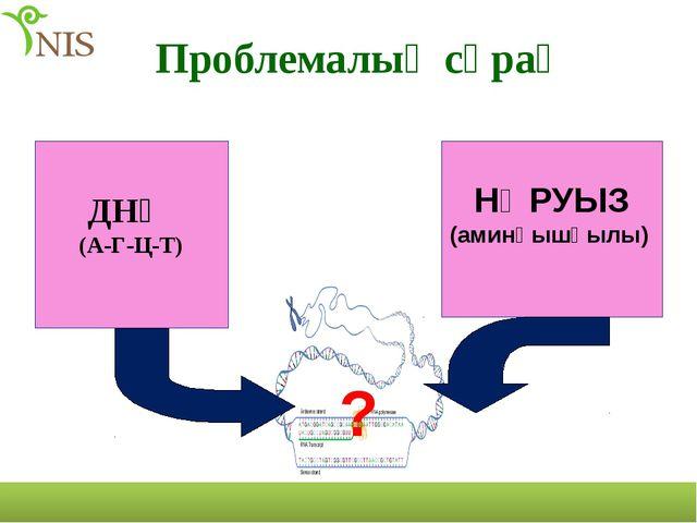 ДНҚ (А-Г-Ц-Т) НӘРУЫЗ (аминқышқылы) ? Проблемалық сұрақ