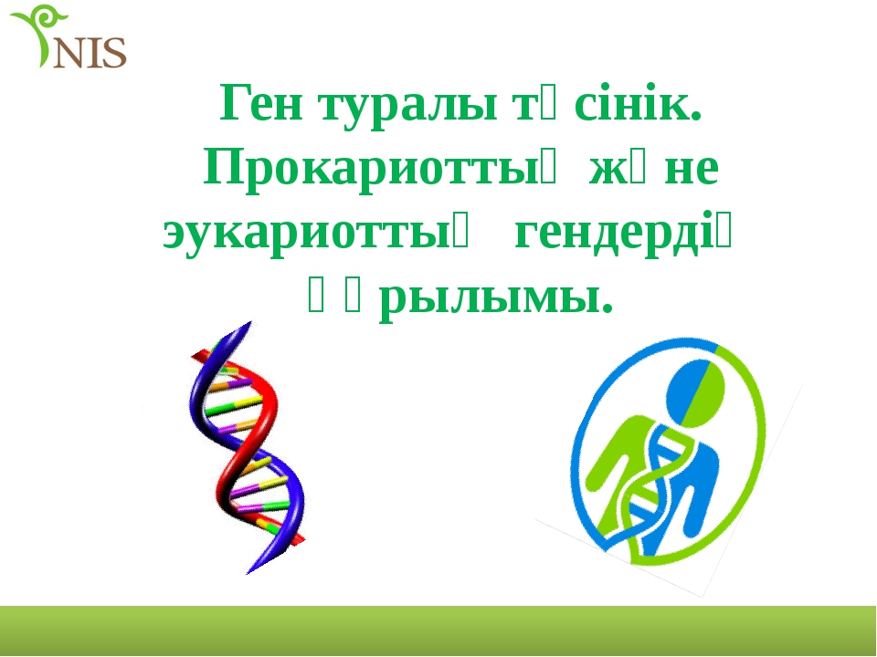 Ген туралы түсінік. Прокариоттық және эукариоттық гендердің құрылымы.