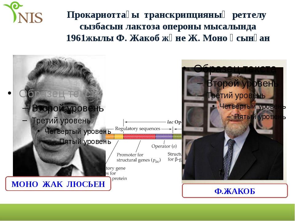 Прокариоттағы транскрипцияның реттелу сызбасын лактоза опероны мысалында 1961...