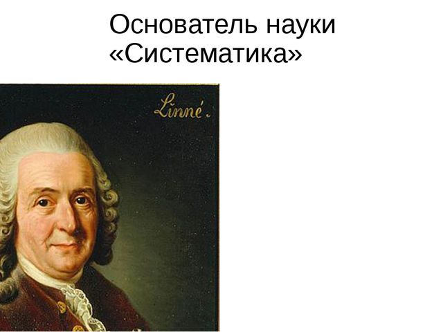 Основатель науки «Систематика»