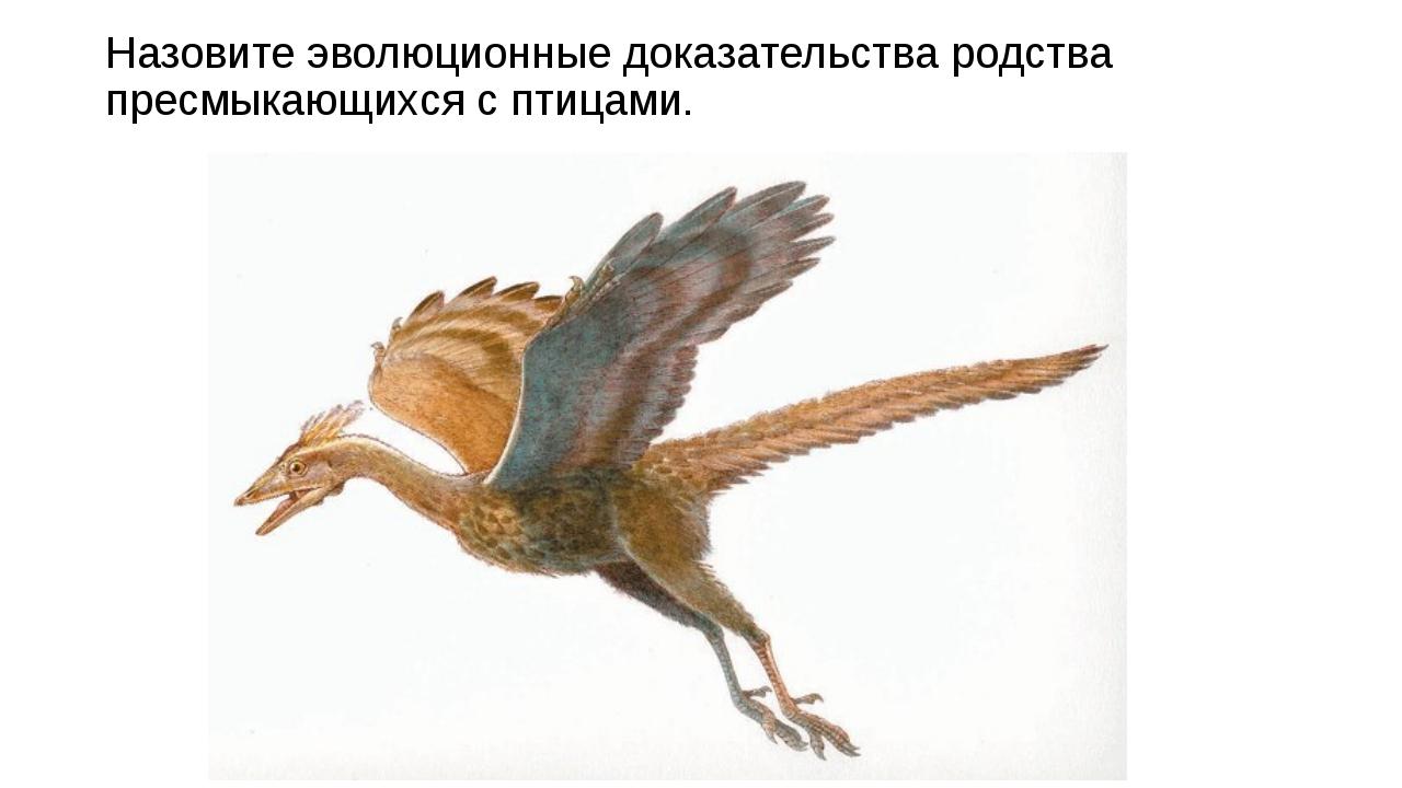 Назовите эволюционные доказательства родства пресмыкающихся с птицами.