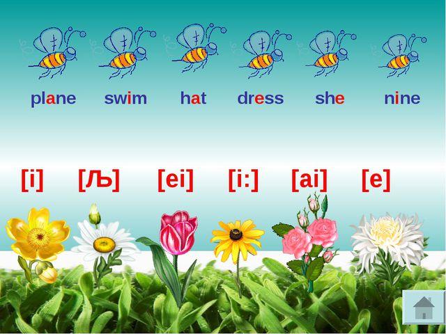 [i] [ai] [ǣ] [ei] [i:] [e] plane she hat dress swim nine