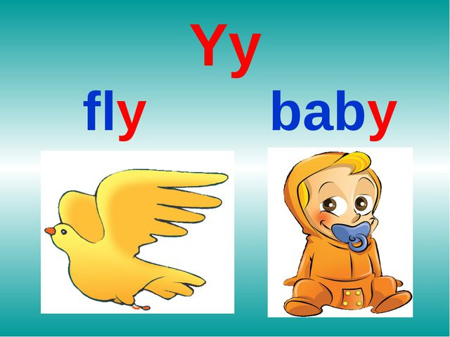 Yy fly baby