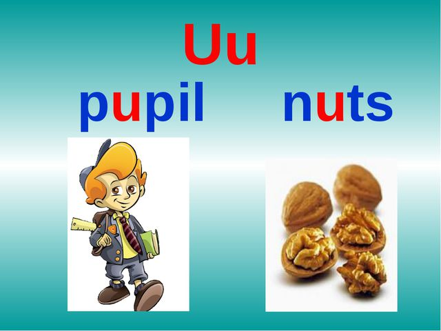 Uu pupil nuts
