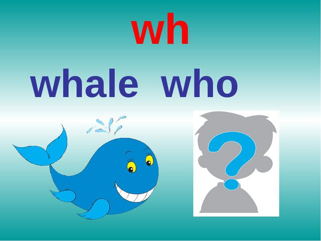wh whale who