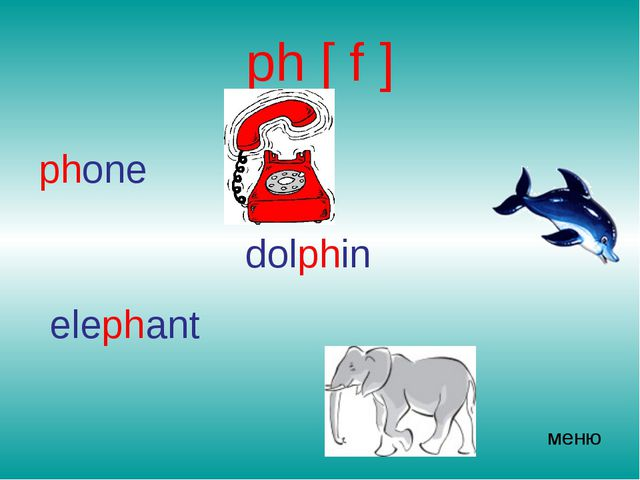 ph [ f ] phone dolphin elephant меню