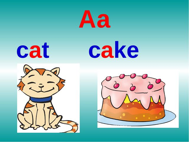 Aa сat cake