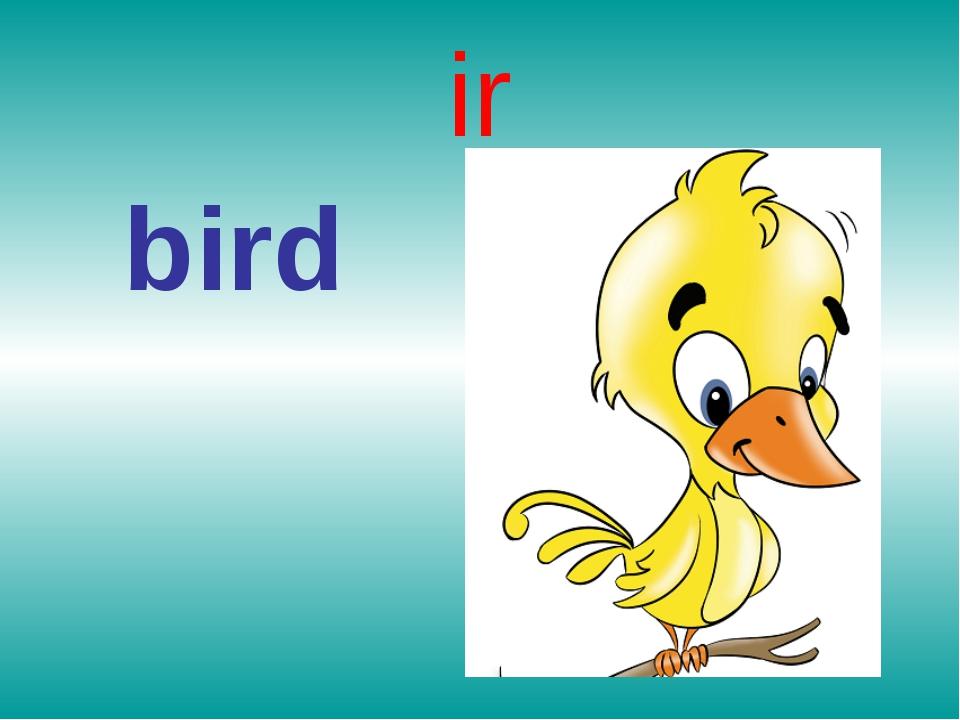 ir bird