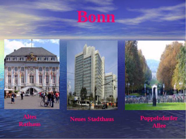 Altes Rathaus Neues Stadthaus Poppelsdorfer Allee Bonn