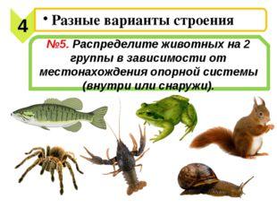 №5. Распределите животных на 2 группы в зависимости от местонахождения опорно