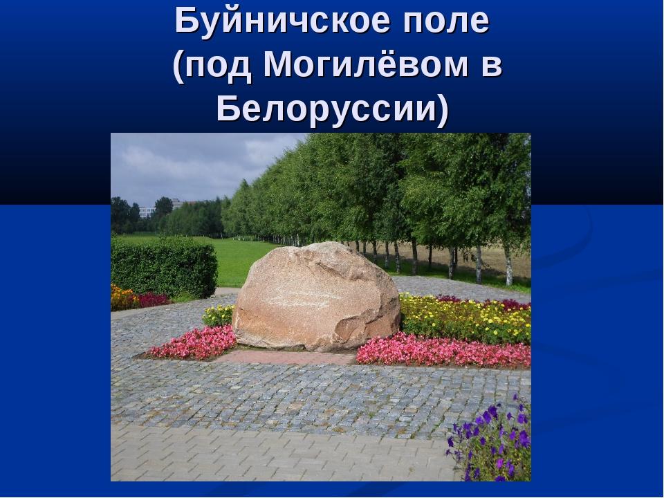 Буйничское поле (под Могилёвом в Белоруссии)