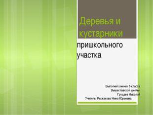 Деревья и кустарники пришкольного участка Выполнил ученик 6 класса Вышеславск