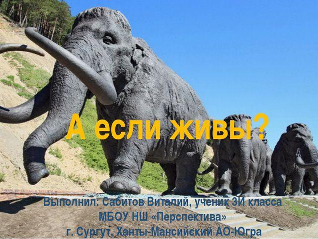 А если живы? Выполнил: Сабитов Виталий, ученик 3И класса МБОУ НШ «Перспектива...