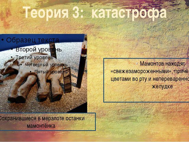 Теория 3: катастрофа Мамонтов находят «свежезамороженными», причём иногда с ц...