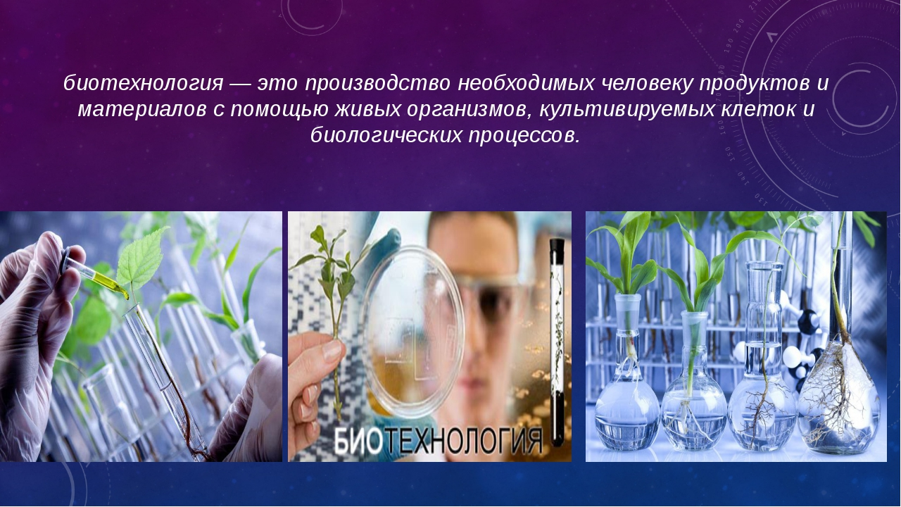 биотехнология — это производство необходимых человеку продуктов и материалов...