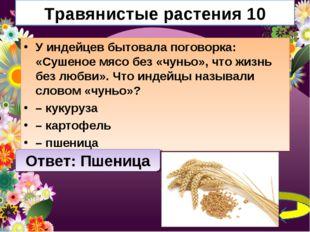 Травянистые растения 10 У индейцев бытовала поговорка: «Сушеное мясо без «чун