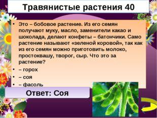 Травянистые растения 40 Это – бобовое растение. Из его семян получают муку, м