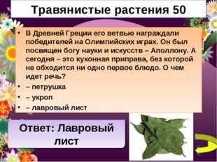 Травянистые растения 50 В Древней Греции его ветвью награждали победителей на