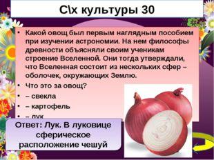 С\х культуры 30 Какой овощ был первым наглядным пособием при изучении астроно