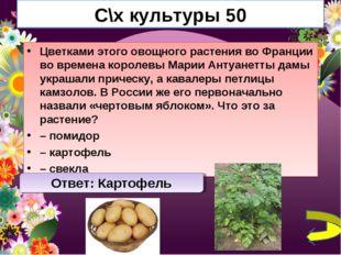 С\х культуры 50 Цветками этого овощного растения во Франции во времена короле