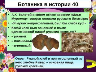 Ботаника в истории 40 А.К. Толстой в своем стихотворении «Илья Муромец» говор