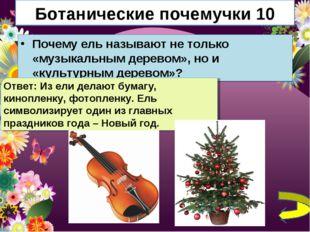 Ботанические почемучки 10 Почему ель называют не только «музыкальным деревом»