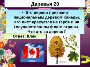 Деревья 20 Это дерево признано национальным деревом Канады, его лист красуетс