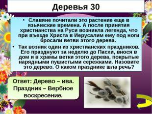Деревья 30 Славяне почитали это растение еще в языческие времена. А после при