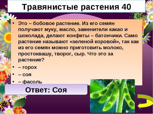 Травянистые растения 40 Это – бобовое растение. Из его семян получают муку, м...