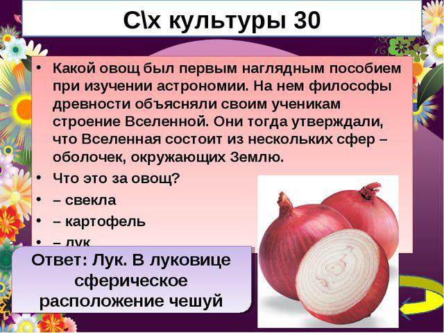 С\х культуры 30 Какой овощ был первым наглядным пособием при изучении астроно...