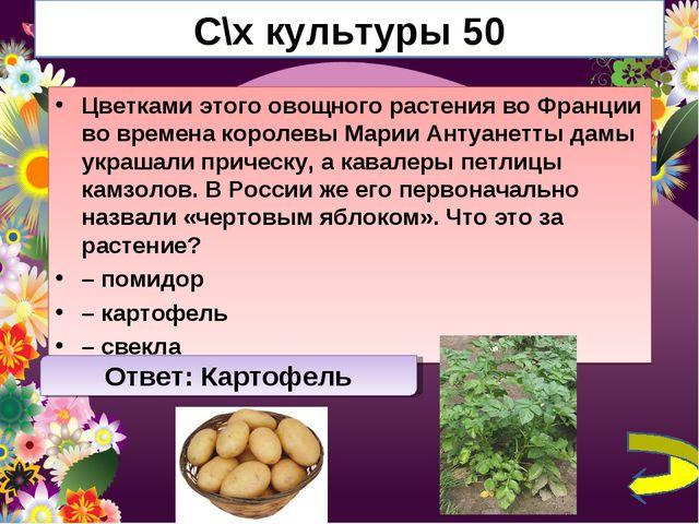 С\х культуры 50 Цветками этого овощного растения во Франции во времена короле...
