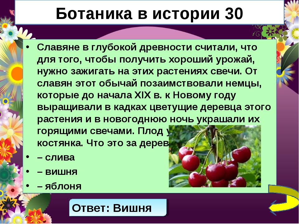 Ботаника в истории 30 Славяне в глубокой древности считали, что для того, что...