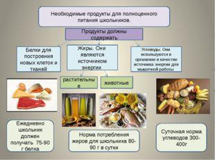 Необходимые продукты для полноценного питания школьников. Продукты должны сод