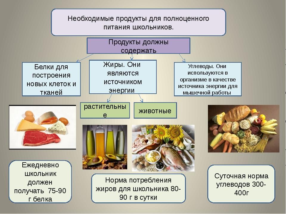 Необходимые продукты для полноценного питания школьников. Продукты должны сод...