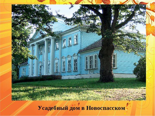 Усадебный дом в Новоспасском