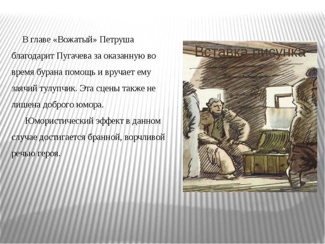 В главе «Вожатый» Петруша благодарит Пугачева за оказанную во время бурана п...