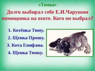 «Томка» Долго выбирал себе Е.И.Чарушин помощника на охоте. Кого он выбрал? 1.