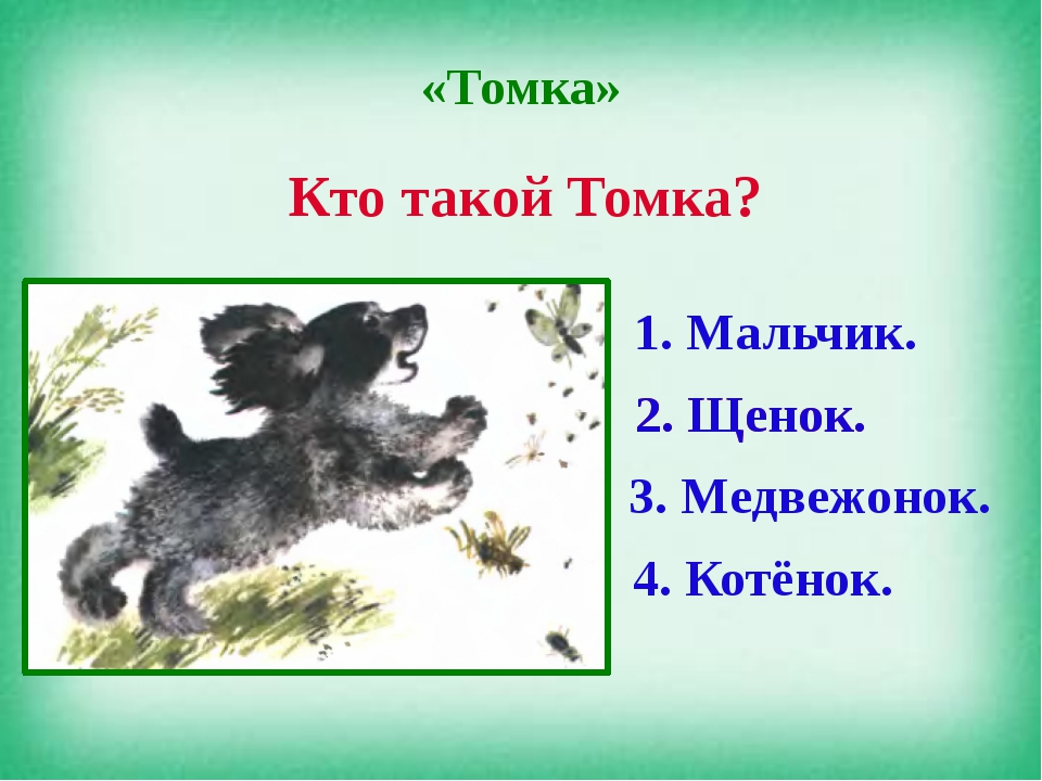 «Томка» Кто такой Томка? 1. Мальчик. 2. Щенок. 3. Медвежонок. 4. Котёнок. 2....