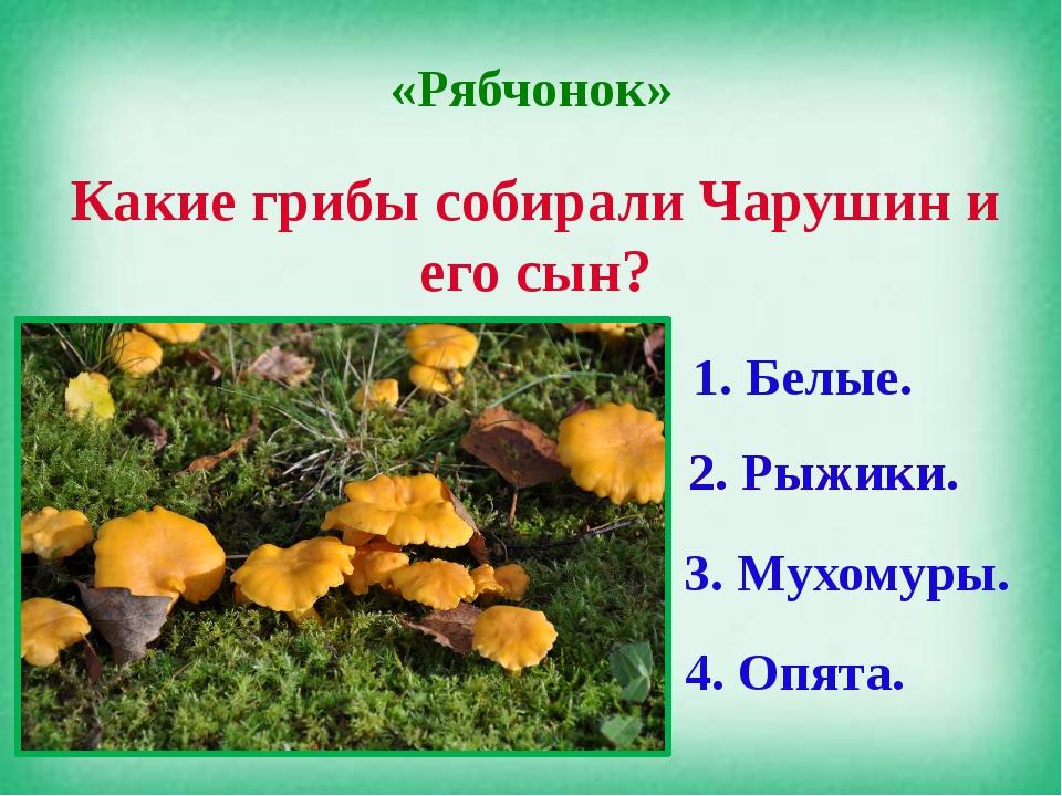 «Рябчонок» Какие грибы собирали Чарушин и его сын? 1. Белые. 2. Рыжики. 3. Му...