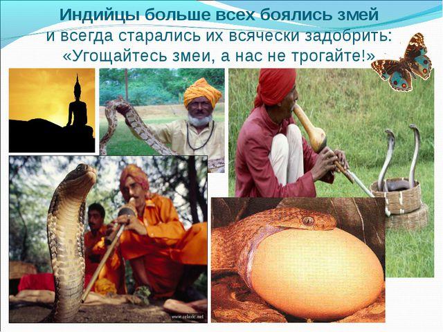 Индийцы больше всех боялись змей и всегда старались их всячески задобрить: «У...