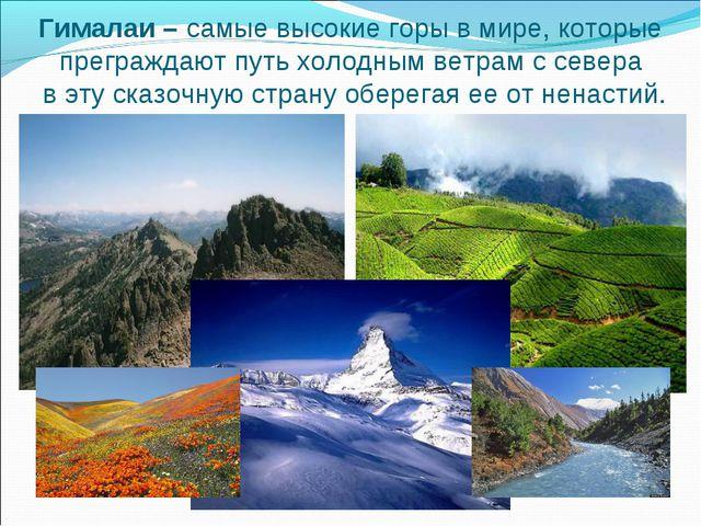 Гималаи – самые высокие горы в мире, которые преграждают путь холодным ветрам...