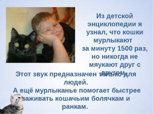 Из детской энциклопедии я узнал, что кошки мурлыкают  за минуту 1500 раз, но