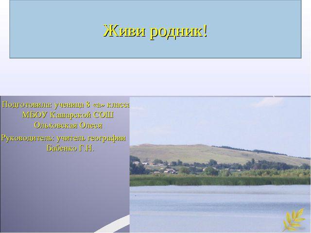 Живи родник! Подготовила: ученица 8 «а» класса МБОУ Кашарской СОШ Ольховская...