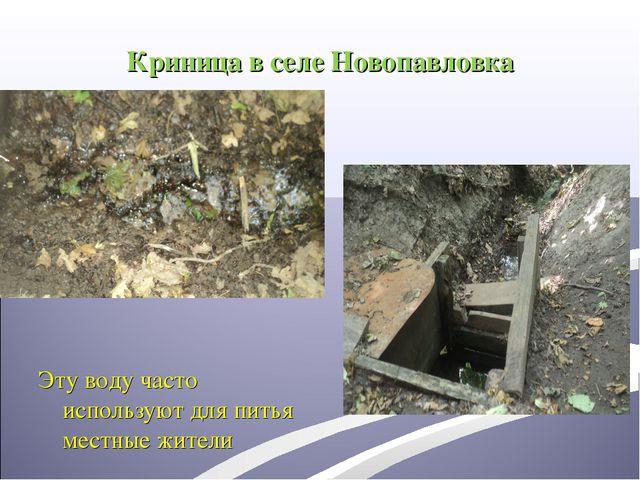 Криница в селе Новопавловка Эту воду часто используют для питья местные жители
